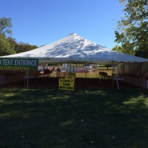 Finally! The tents are up, now we can get to work!